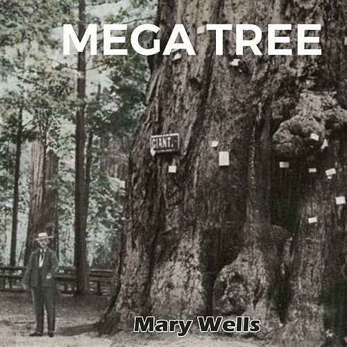 Mega Tree by Mary Wells