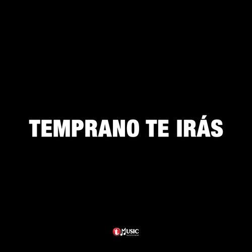 Temprano Te Irás de Los Tremendos Leon