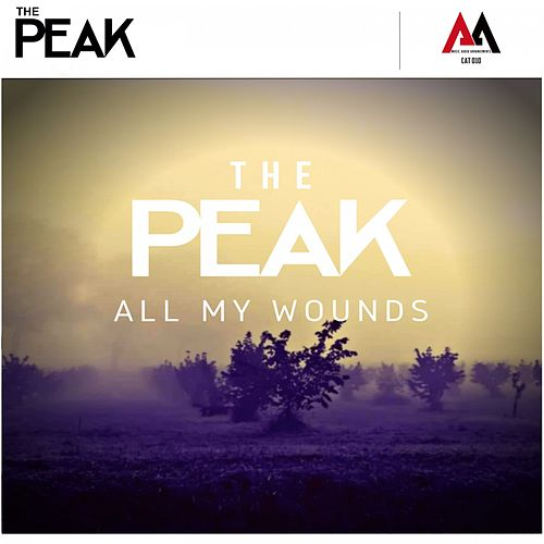 All My Wounds by Peak (New Age)