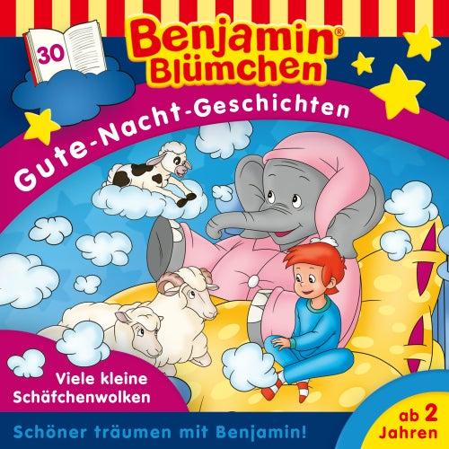 Gute-Nacht-Geschichten - Folge 30: Viele kleine Schäfchenwolken von Benjamin Blümchen