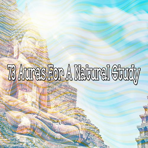 73 Auras for a Natural Study von Massage Therapy Music