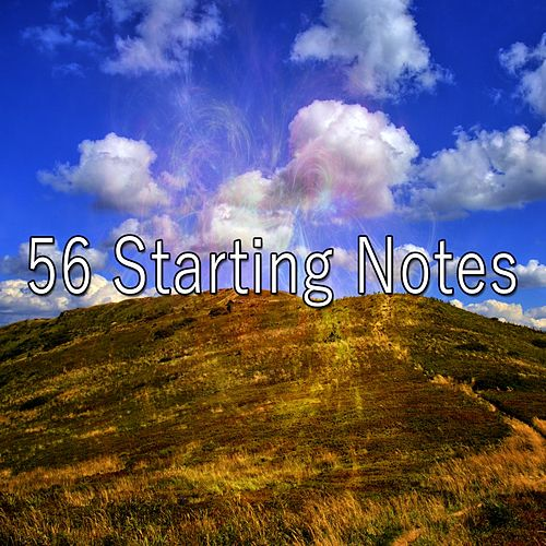 56 Starting Notes de Zen Meditate