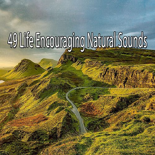 49 Life Encouraging Natural Sounds by Yoga Music