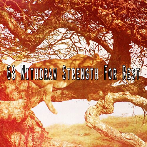 68 Withdraw Strength for Rest von S.P.A