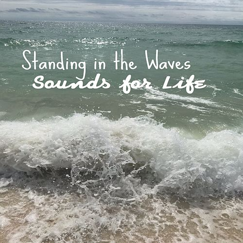 Standing In The Waves by Sounds for Life