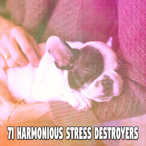 71 Harmonious Stress Destroyers von Rockabye Lullaby