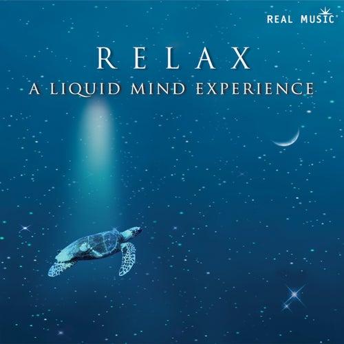 RELAX:  A Liquid Mind Experience de Liquid Mind