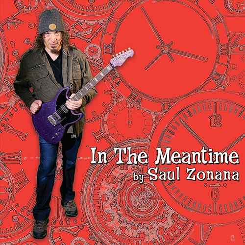In the Meantime by Saul Zonana