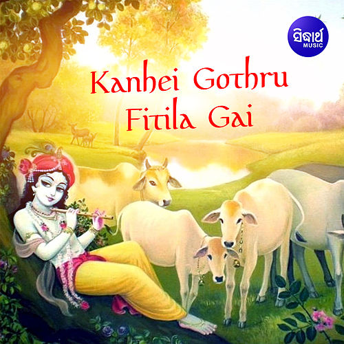 Kanhei Gothru Fitila Gai de Siba