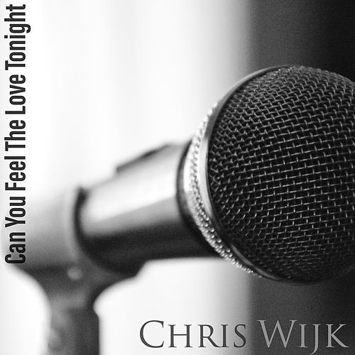 Can You Feel The Love Tonight von Chris Wijk