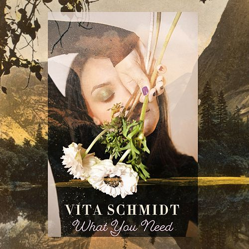 What You Need by Vita Schmidt