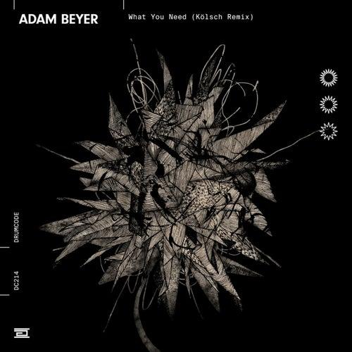 What You Need (Kölsch Remix) de Adam Beyer