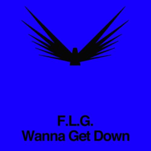 Wanna Get Down von F.L.G.