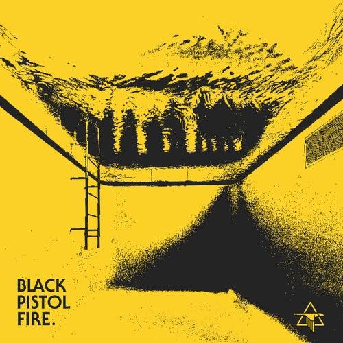 Well Wasted de Black Pistol Fire