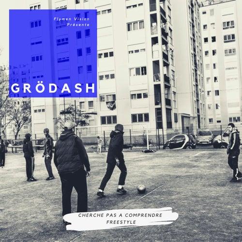 Cherche pas à comprendre freestyle de Grödash
