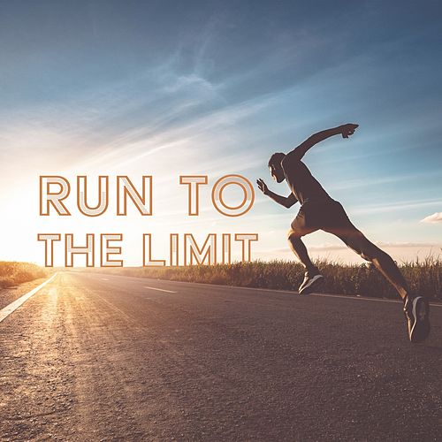 Run to the Limit by Various Artists