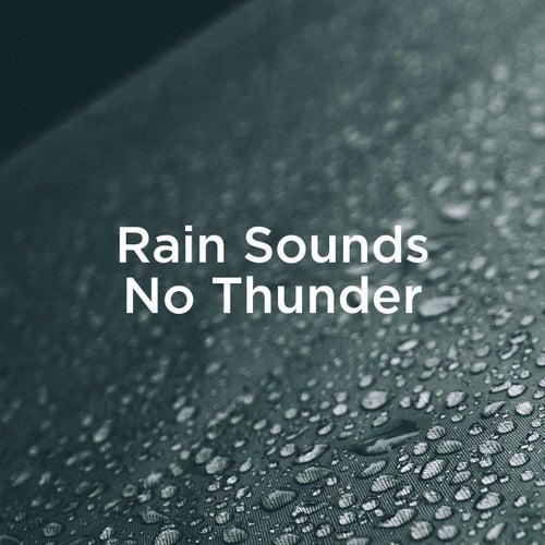 Rain Sounds No Thunder by Rain Sounds