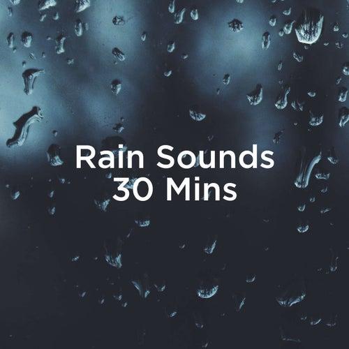 Rain Sounds 30 Mins by Rain Sounds