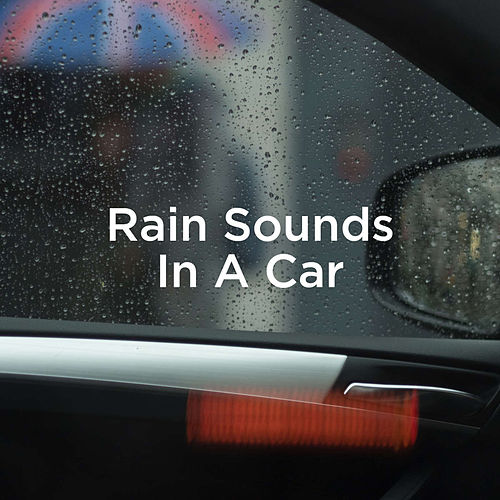Rain Sounds In A Car by Rain Sounds