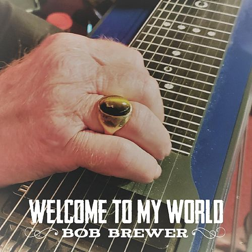 Welcome to My World by Bob Brewer