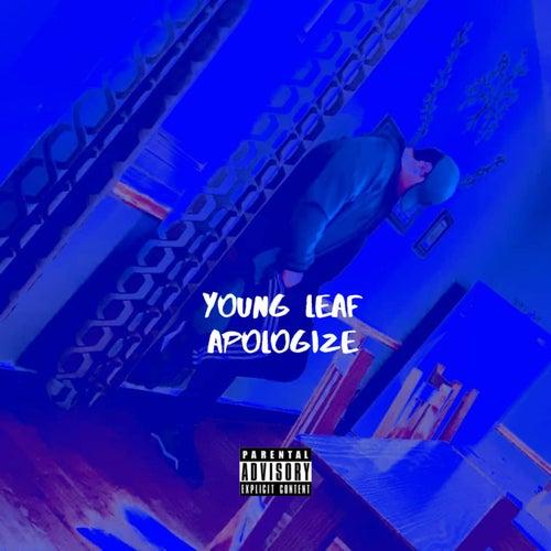 Apologize de Young Leaf