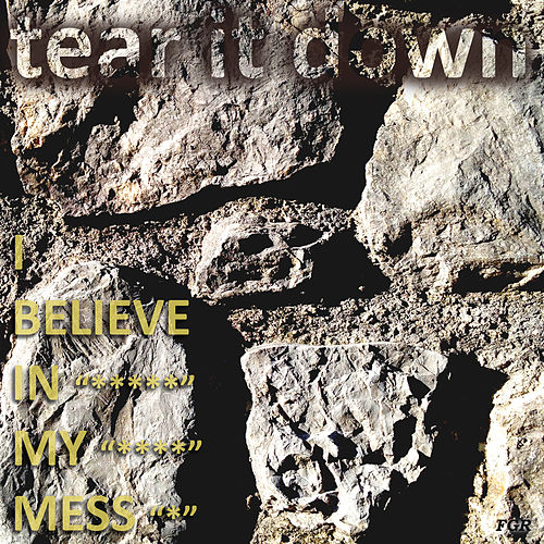 Tear It Down by I Believe In My Mess
