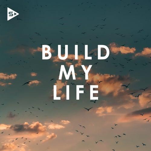 Build My Life de Various Artists