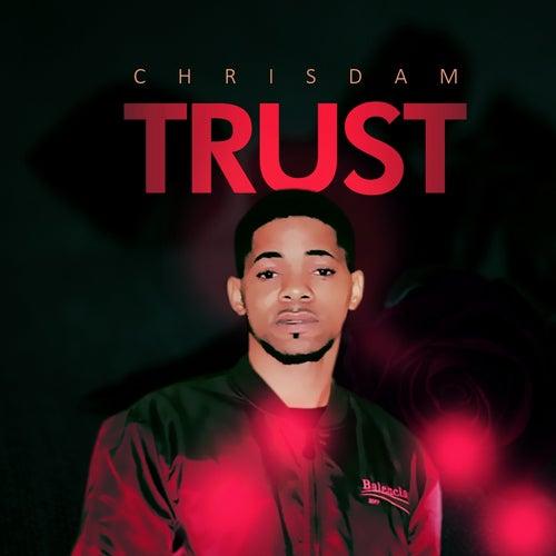 Trust by Chrisdam