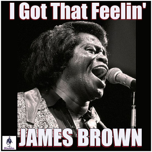 I Got That Feelin' (Live) by James Brown