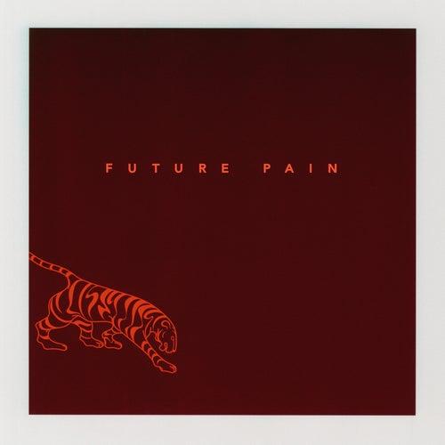 Future Pain by Vanessa Carlton