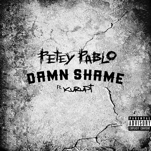 Damn Shame de Petey Pablo