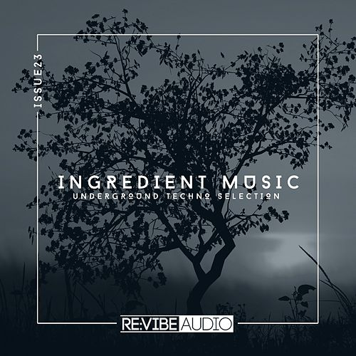 Ingredient Music, Vol. 23 by Various Artists