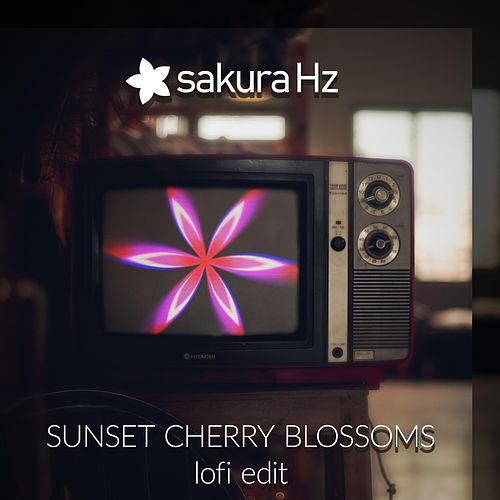 Sunset Cherry Blossoms - Lofi Edit by Sakura Hz