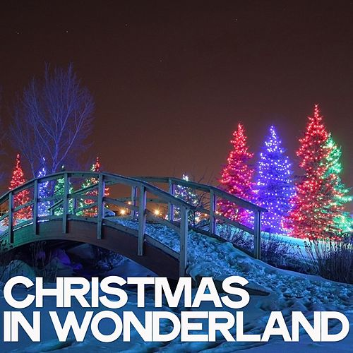 Christmas in Wonderland by Various Artists