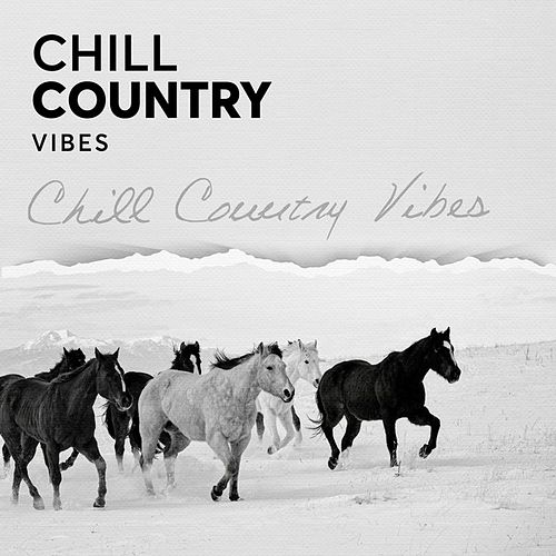 Chill Country Vibes de Various Artists