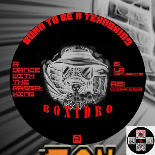 Born to be a Teknokind de Boxidro