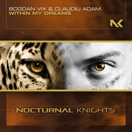 Within My Dreams van Bogdan Vix