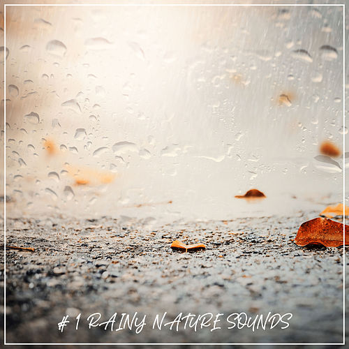 # 1 Rainy Nature Sounds by Nature Sounds (1)