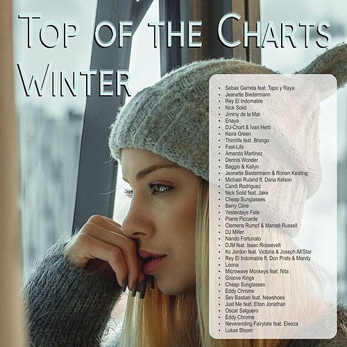 Top of the Charts Winter von Various Artists