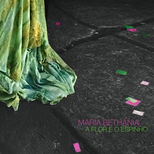 A Flor e o Espinho (Citação: Sombras da Água) von Maria Bethânia