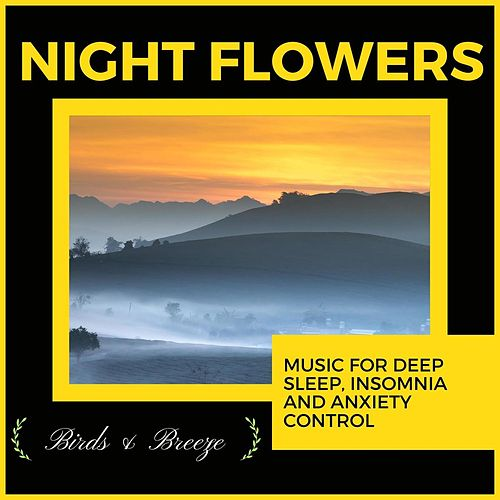 Night Flowers - Music For Deep Sleep, Insomnia And Anxiety Control di Ambient 11