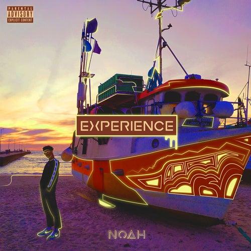 Experience de Noah