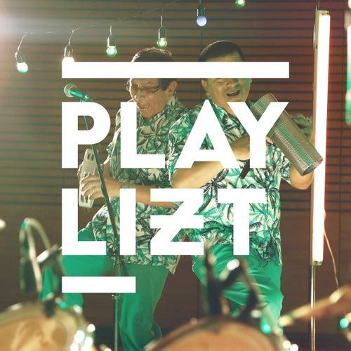 PLAYLIZT Presenta: los Mirlos (En Vivo) de Los Mirlos