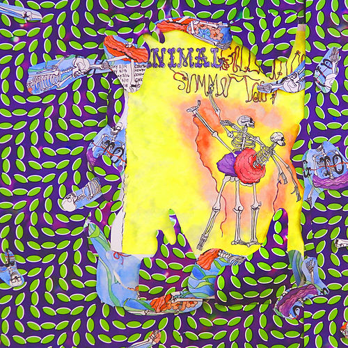 Ballet Slippers von Animal Collective