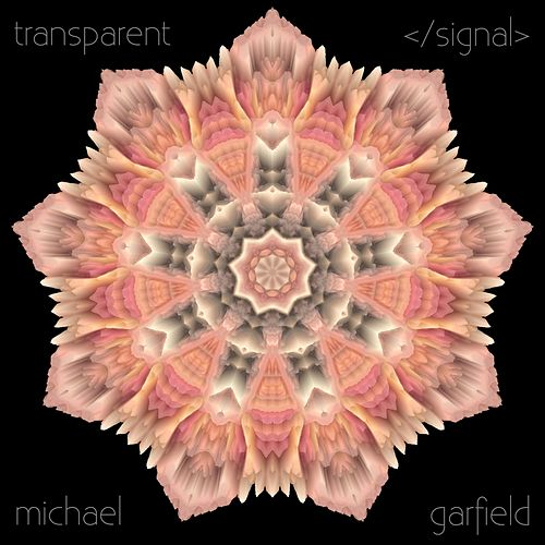 Transparent </Signal> by Michael Garfield
