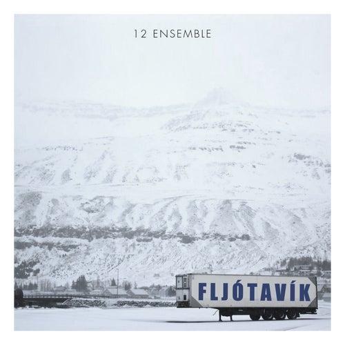 Birgisson: Fljótavík di 12 Ensemble
