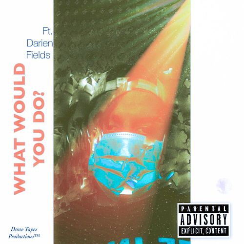 What Would You Do? von The Demo Tapes