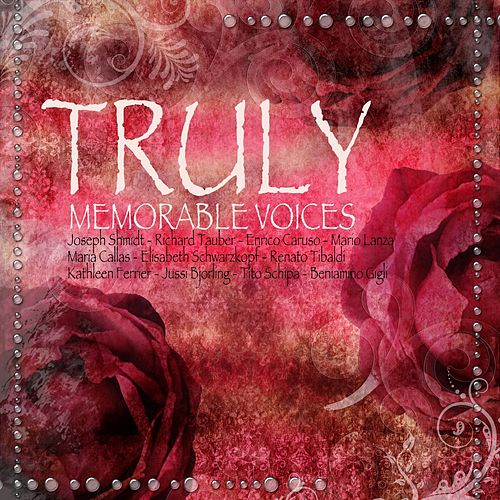 Truly Memorable Voices by Various Artists