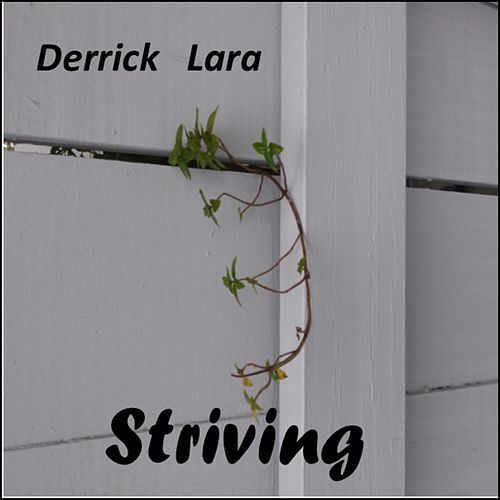 Striving by Derrick Lara