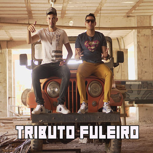 Tributo Fuleiro na Web de Diego DDL